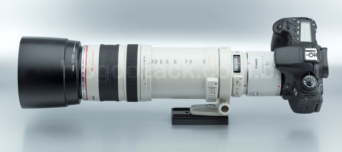 Canon EF 100-400mm f/4.5-5.6L IS USM Extender 2X III