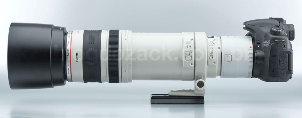 Canon EF 100-400mm f/4.5-5.6L IS USM + EF Extender 2X III com a EOS 60D.
