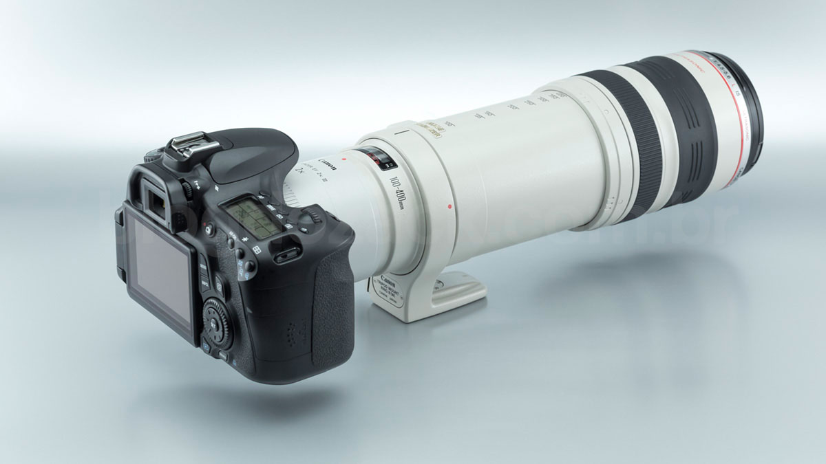 Canon EF Extender 2X III EOS 60D 100-400mm f/4.5-5.6L