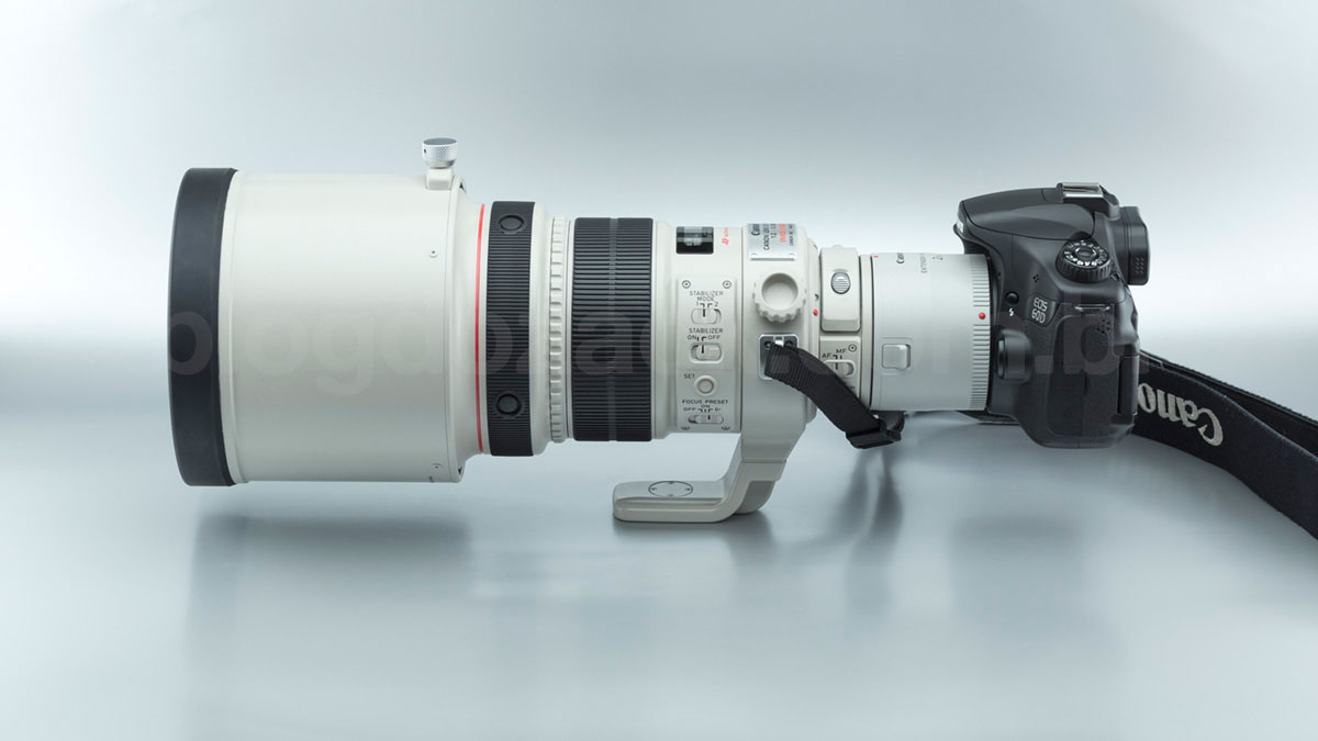 Canon EF 200mm f/2L IS USM + Extender 2X III