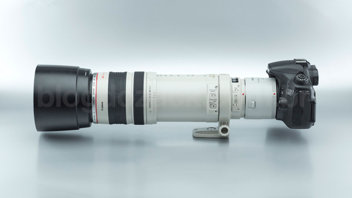 Canon EF 100-400mm f/4.5-5.6L IS USM + Extender 2X III