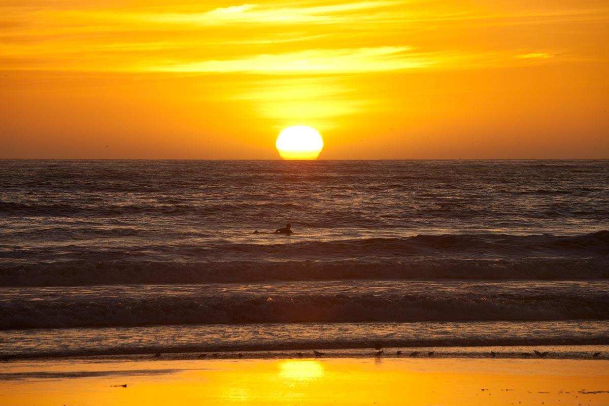 """""""Sunset"""" em f/14 1/400 ISO500 @ 300mm."""