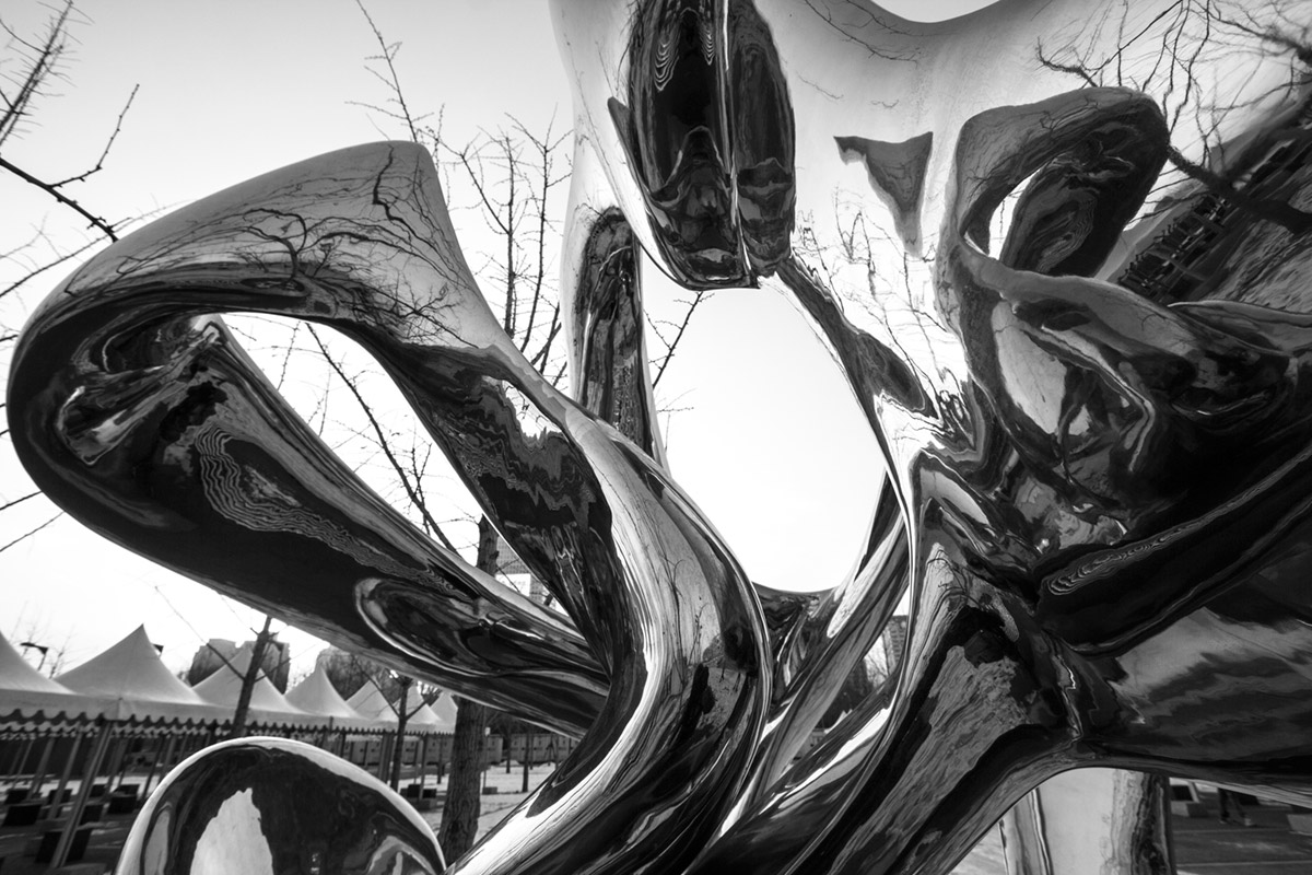 """Sculpture"" em f/8 1/160 ISO100 @ 10mm."