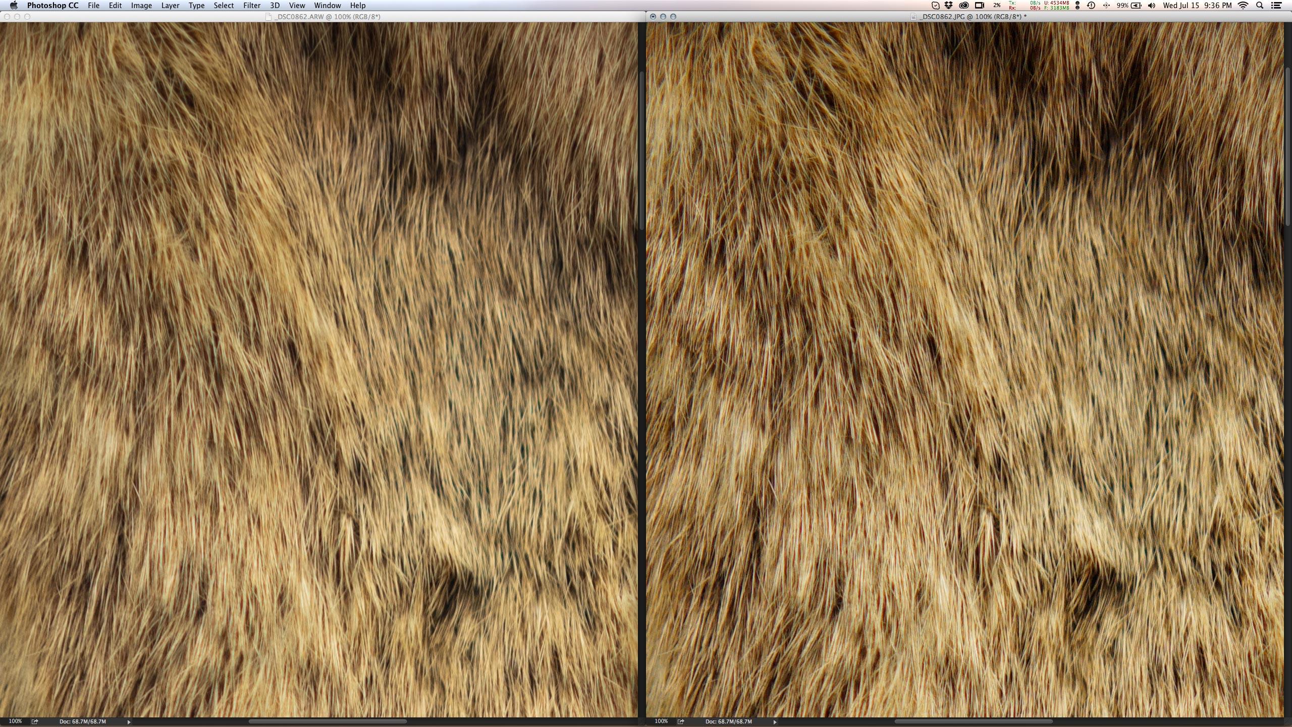 Funciona para arquivos JPEG extremamente nítidos direto da câmera (direita).