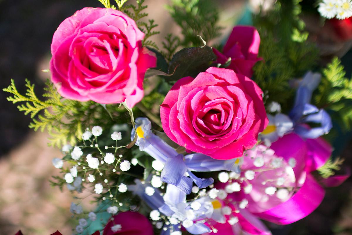 """""""Rosas"""" em f/1.4 1/4000 ISO200."""
