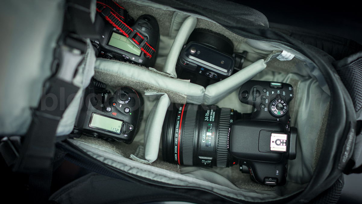 vlog do zack's photo backpack: two main full frames (D750 and 6D) and two backup APS-Cs (EOS M and T6i).