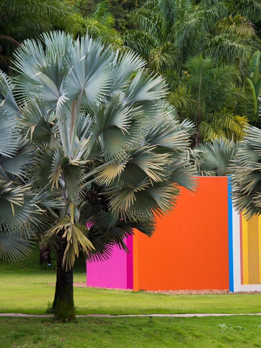 """""""Invenção da cor, Penetrável Magic Square #5, De Luxe, 1977"""" em f/8 1/100 ISO220 @ 180mm."""