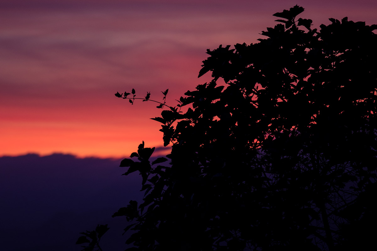 """Dusk"" at f/4 1/40 ISO400 @ 180mm."