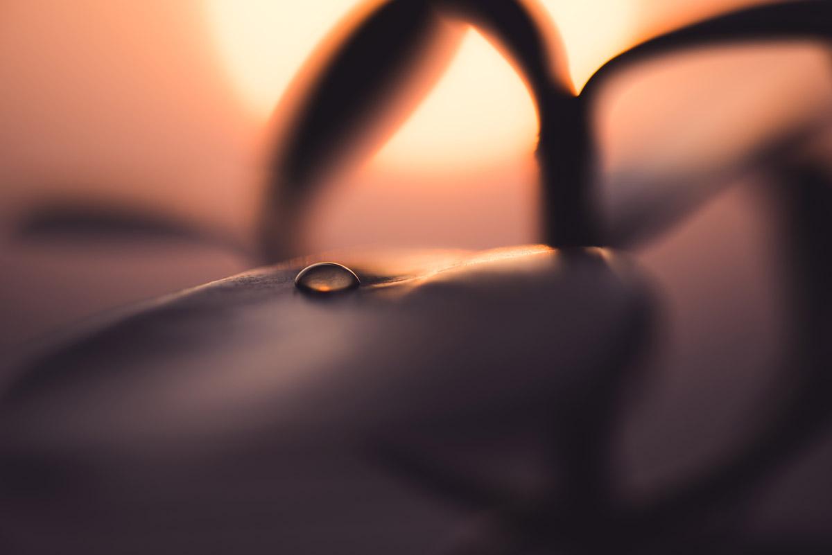 """""""Droplet"""" em f/3.5 1/200 ISO100 1:2."""