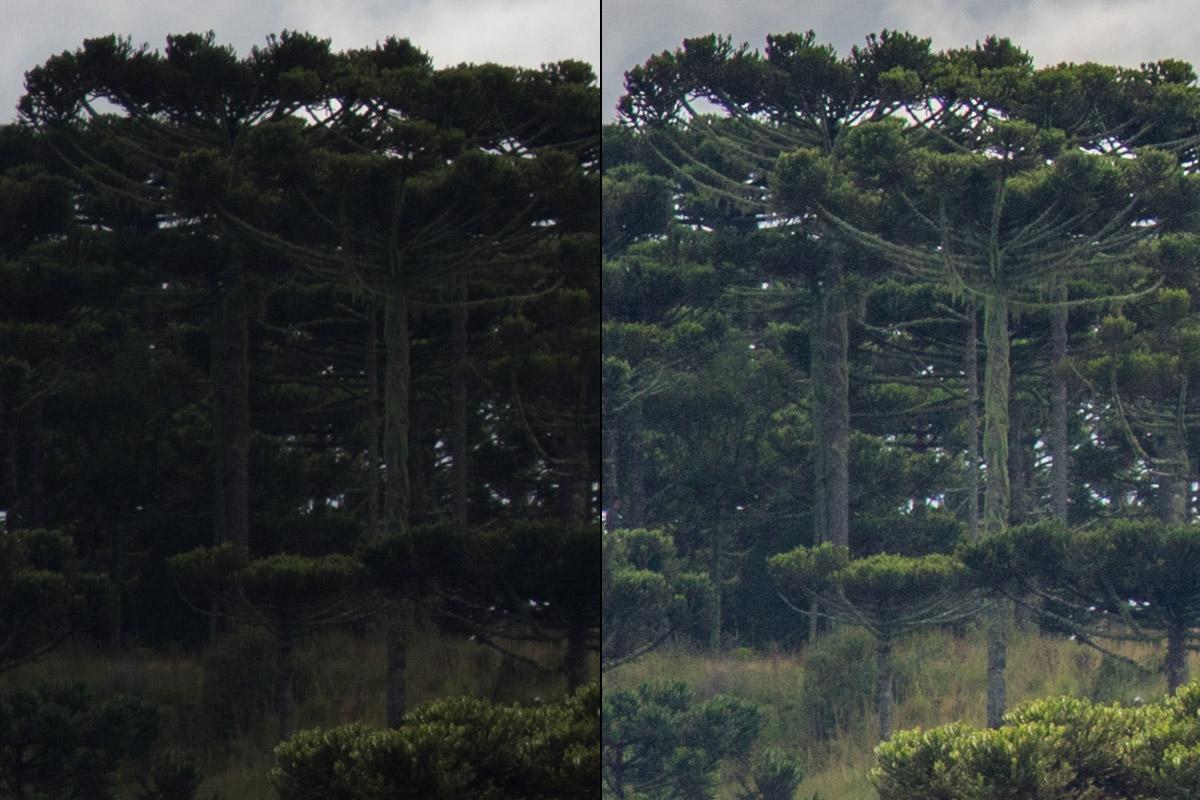 Crop 100%, puxando +0.25 na exposição e +90 nas sombras (!), praticamente não vemos banding; ruídos aparecem.