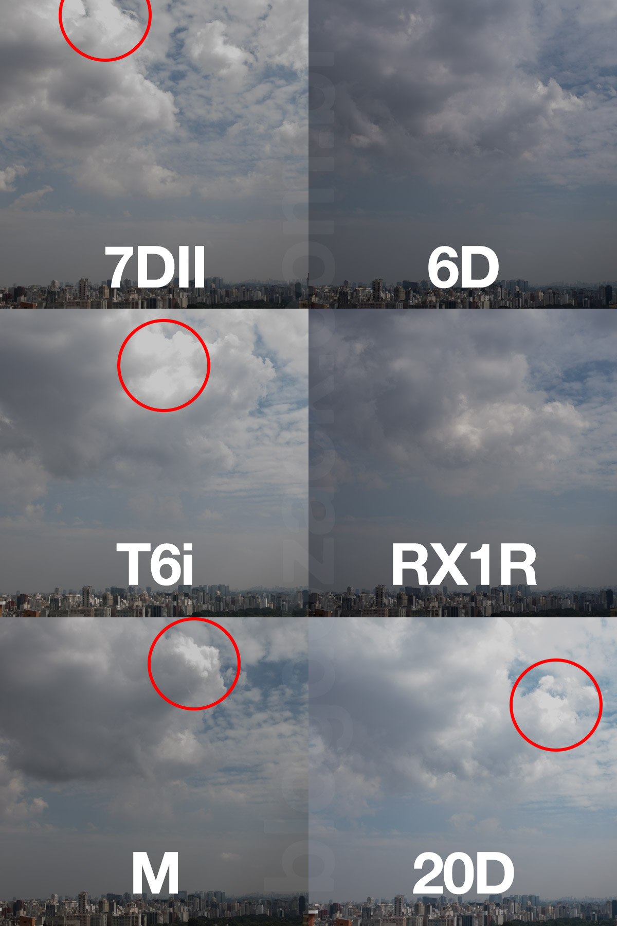 Note como todas as APS-C da Canon não conseguem recuperar as nuvens (destaque) enquanto as full frame não estouram.