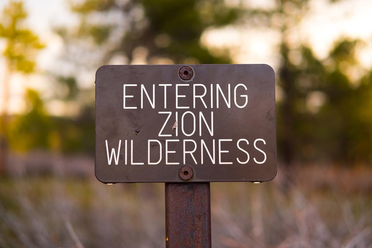 """""""Wilderness"""" em f/2 1/480 ISO200; highlights tem aparência suave para o """"efeito bokeh""""."""