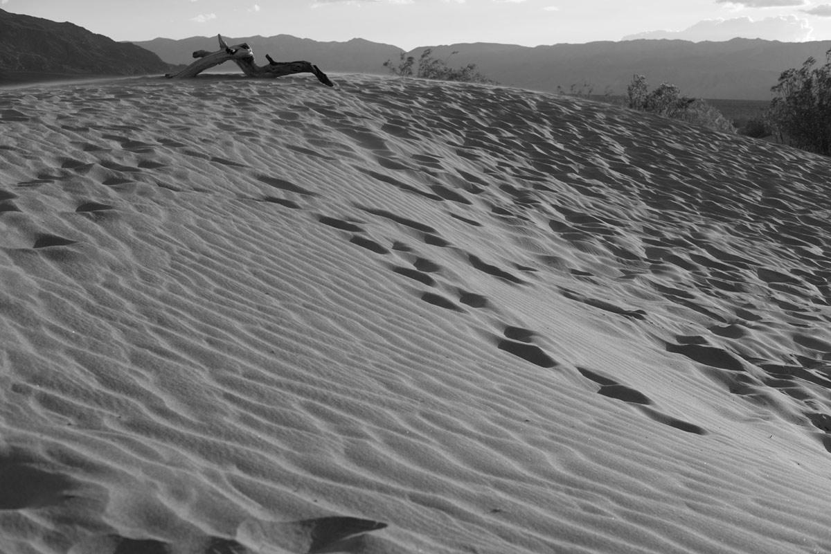 """Mesquite Sand Dunes"" em f/5.6 1/420 ISO200."