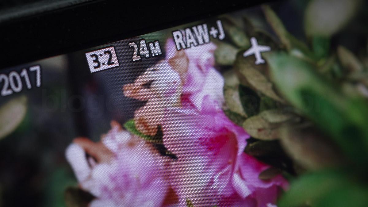 Sony A6500 LCD PIXELS