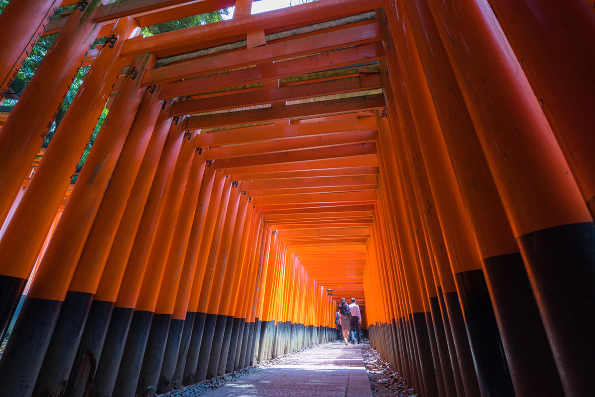 """Fushimi-Inari"" with the EOS T7i + Tamron 10-24mm f/3.5-4.5 Di II VC HDL at f/6.3 1/30 ISO200 @ 10mm."