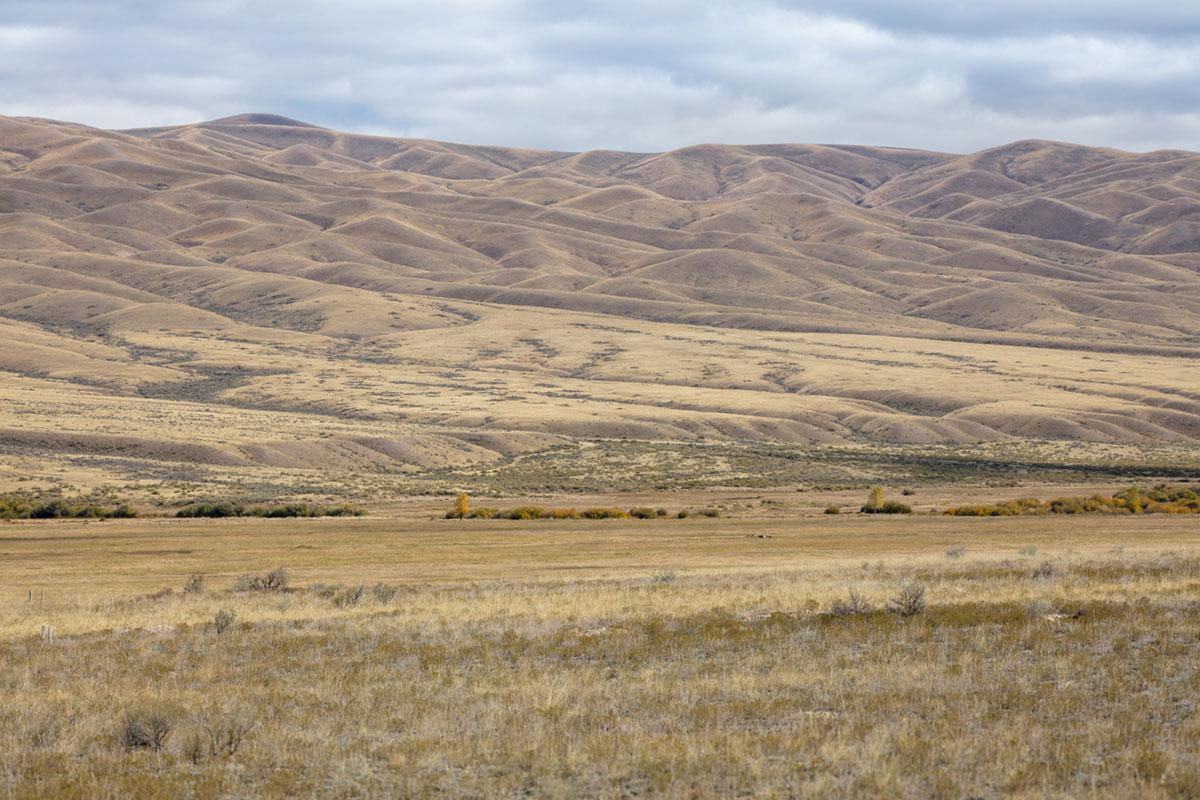 """""""Campo"""" at f/6.7 1/500 ISO100; projeção perfeitamente plana para paisagens."""